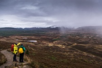 Walking in Glenmore, Scottish Highlands.