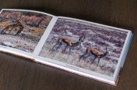 saal digital photo book