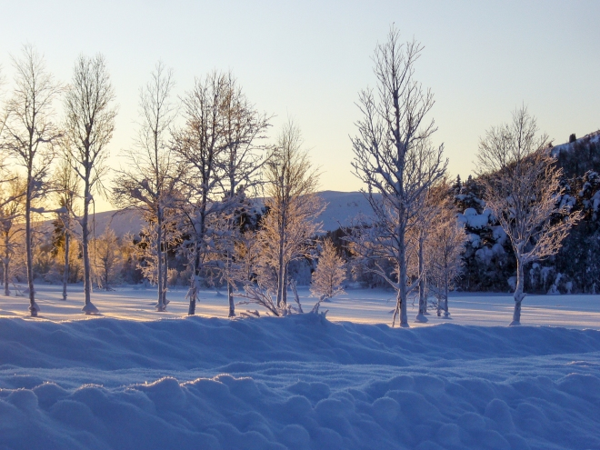 Afternoon light on the winter wonderland of Gala, Norway.